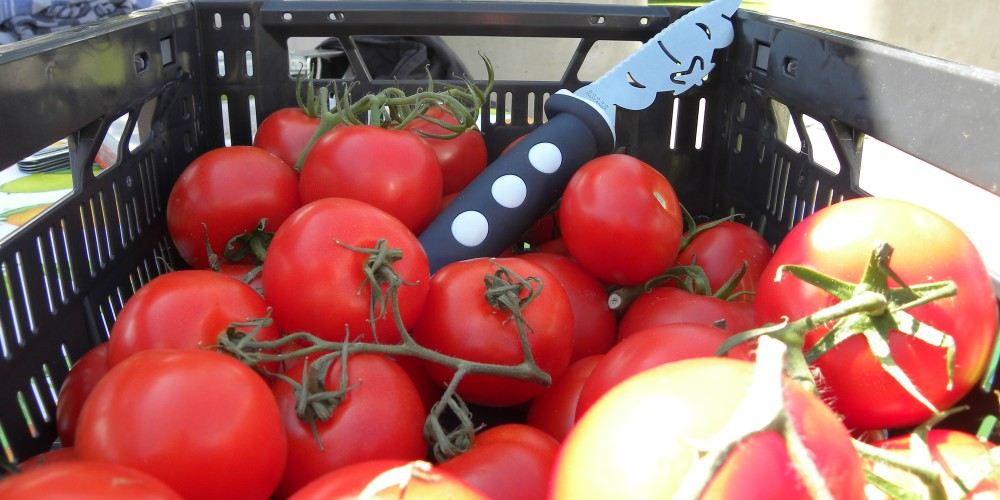 tomaten, vers sappig